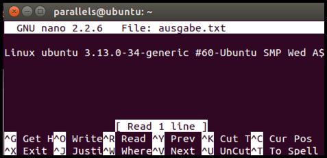 Ubuntu-Ausgabe-Aus-Datei-Mit-Nano-Ausgelesen
