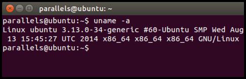 Ubuntu-Terminal-Ausgabe-Beispiel
