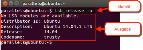 lsb_release-a-Befehl-Bei-Ubuntu