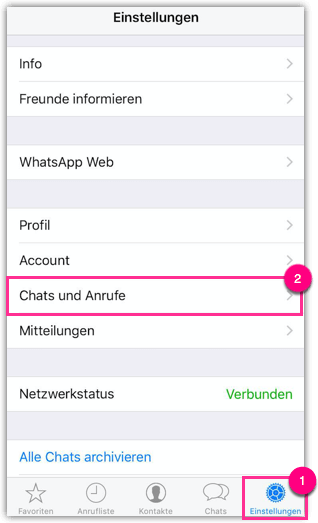 iPhone WhatsApp Backup