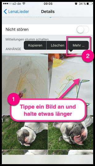 iPhone iPad iMessage Bild speichern