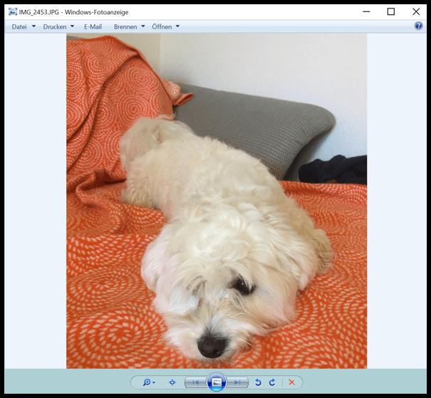 Windows 10 Ein Bild wurde in der Alten Fotoanzeige geoeffnet