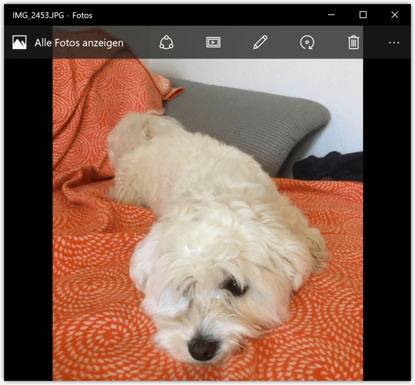 Windows 10 Fotos werden mit der neuen App Fotos geoeffnet